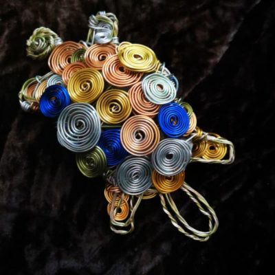 spiral turtle
